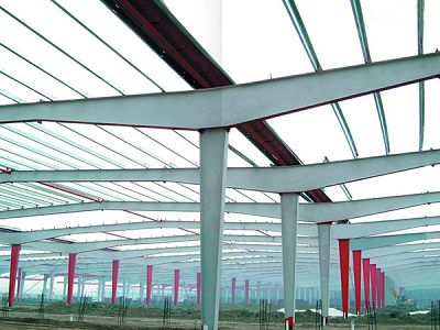 Space Frame and Steel Structure Low Cost